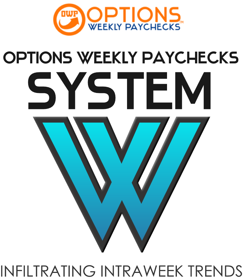 OWP SYSTEM W